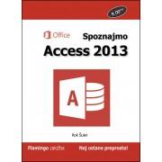 Priročnik Spoznajmo Access 2013, Rok Šuler