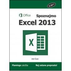 Priročnik Spoznajmo Excel 2013, Aleš Šuler